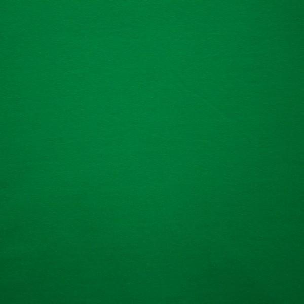 Jersey Baumwolle Stoff - Uni Grün