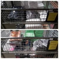 Restposten Lagerware - Wühlkisten Sotiment